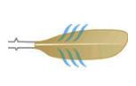 дехидрална форма на лопатката